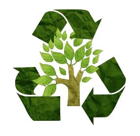 Essay about Should Recycling Be Mandatory? - 486 Words